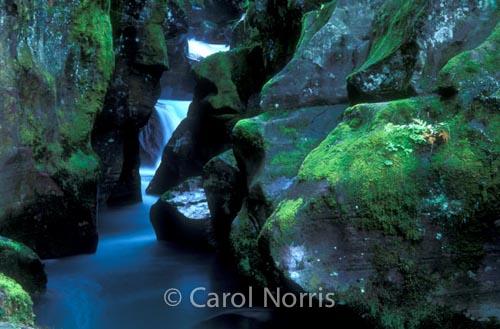 Americana-Glacier-national-park-gorge-waterfall-montana