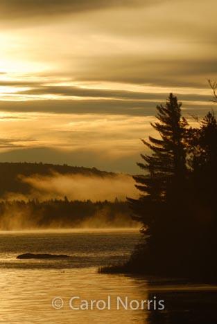 Canada-ontario-algonquin-park-lake-mist-sunrise