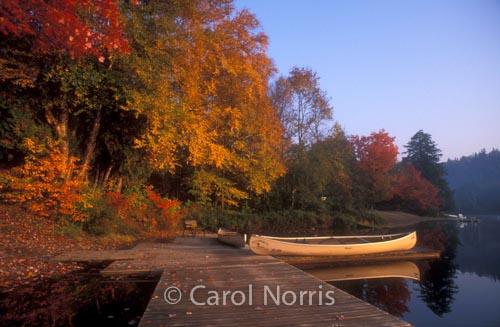 Canadian-fall-colours-canoe-Ontario-Algonquin-Park