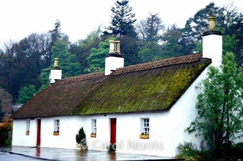 European-Britain-Thatched-roof-cottage