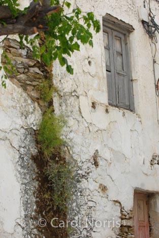 European-Greece-Greek-island-Corfu-building-overgrown