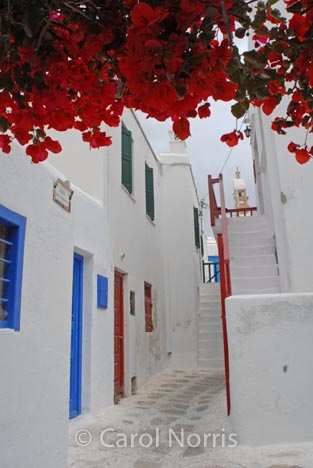 European-Greece-Greek-island-Mykonos-bougainvillea-red-blue-doors