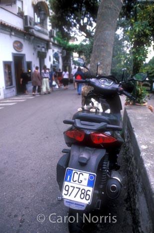 European-Italy-Positino-motorbike-black-white-cat-asleep-passenger