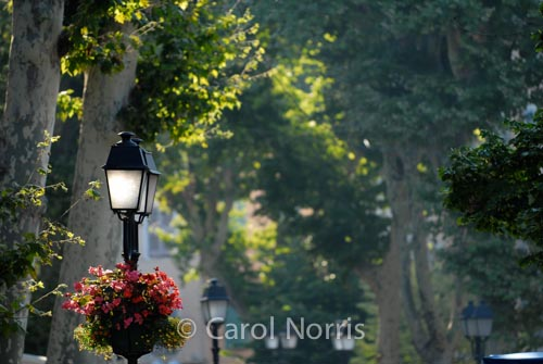 Provence-France-lamps