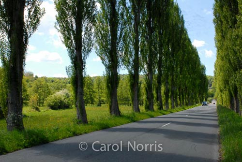 country-roads-france