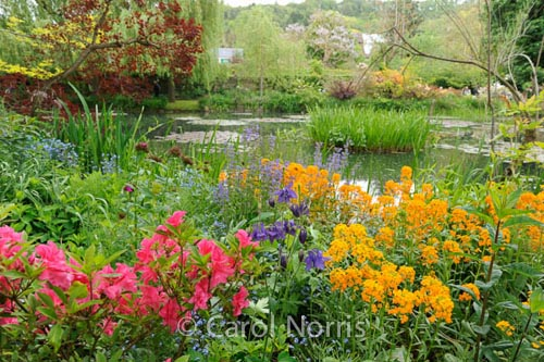 In Monet'€™s Garden IV