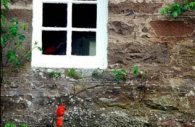 European-Scotland-Britain-stone-cottage-window-spring-flowers.jpg