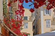 European-Greece-Corfu-restaurant-bougainvillea.jpg