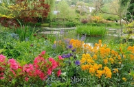 monet-garden-giverny-paris-lake-flowers.jpg