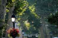 Provence-France-lamps.jpg