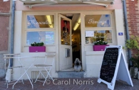 dog-beauty-parlor-paris.jpg